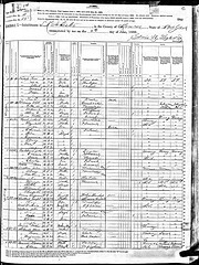 1880 census record, Rochester, Monroe County, New York, USA